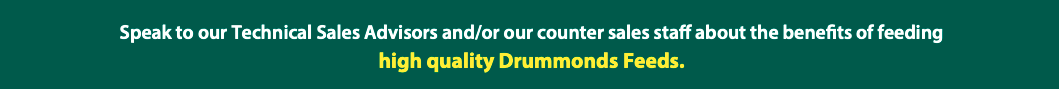 Speak to your Local Advisors High Quality Drummonds Feeds