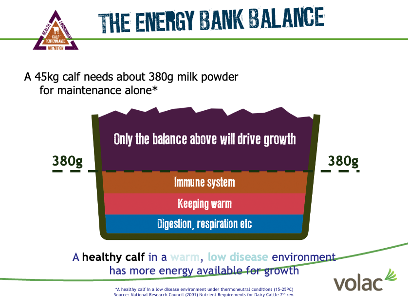 The Energy Bank Balance